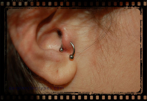 Curved barbell tragus piercing