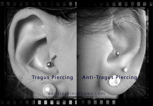 difference between tragus and anti-tragus piercings