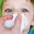 Toddlers And Allergies